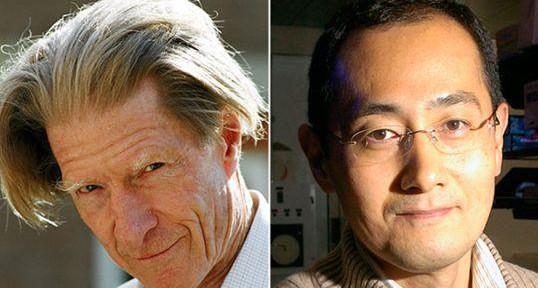 Premio-Nobel-per-la-medicina-2012:-Immagini-Video.jpg